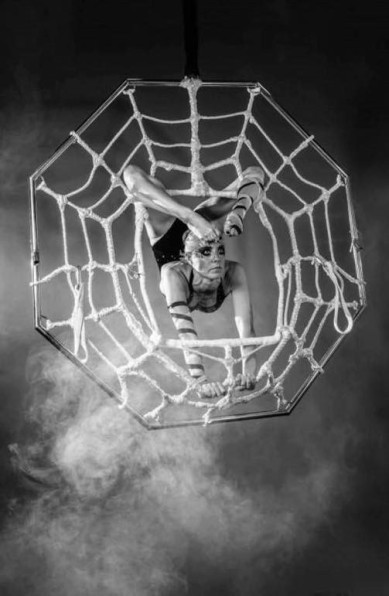 aerial spider show